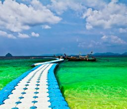 Circulation of blue & green